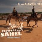 FESTIVAL DU SAHEL 2015 - IMAGE 1